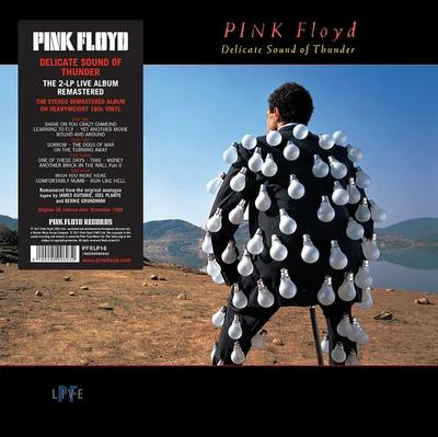 Pink Floyd - Delicate Sound Of Thunder (2LP) (udsolgt)